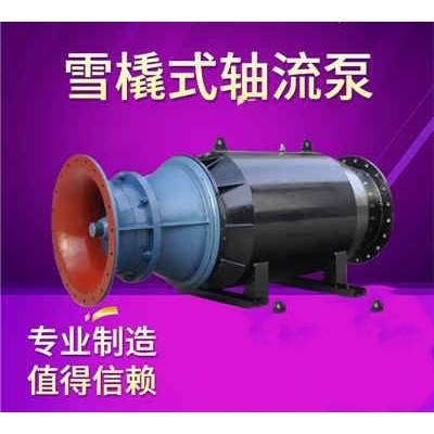 卧式雪橇式潜水轴流泵生产厂家