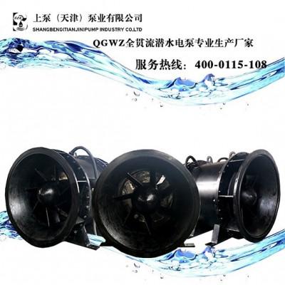 全灌流潜水泵厂家