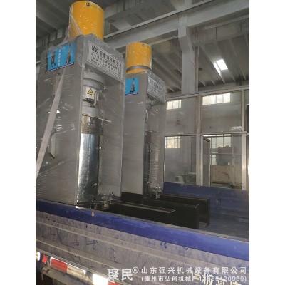 南瓜子大型冷榨機械設備 紅花籽新款全自動榨油機成套設備